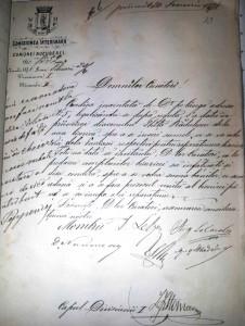 1871 Ghita Radulescu